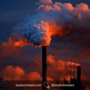 que debemos hacer para cuidar el medio ambiente