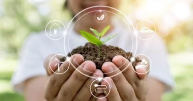 formas de cuidar el medio ambiente