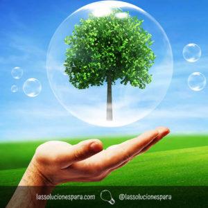 Tips Para Cuidar El Planeta