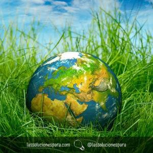 Como Ayudar Al Medio Ambiente